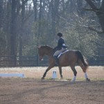 "Kathryn Hall riding ""Four O'Clock Phinneus"" in Program Ride phase of the USHJA/ANRC Horsemanship Program class at the Cottonwood Horse Trials"